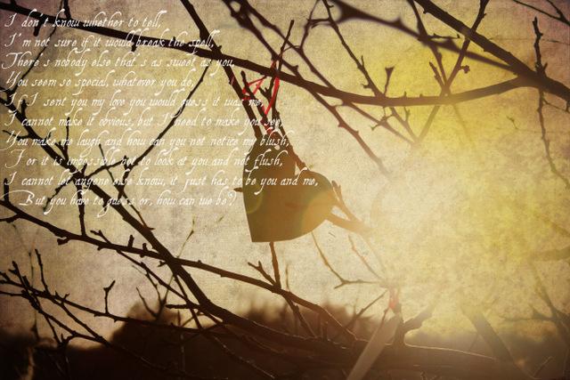 Valelentines day photo and poem