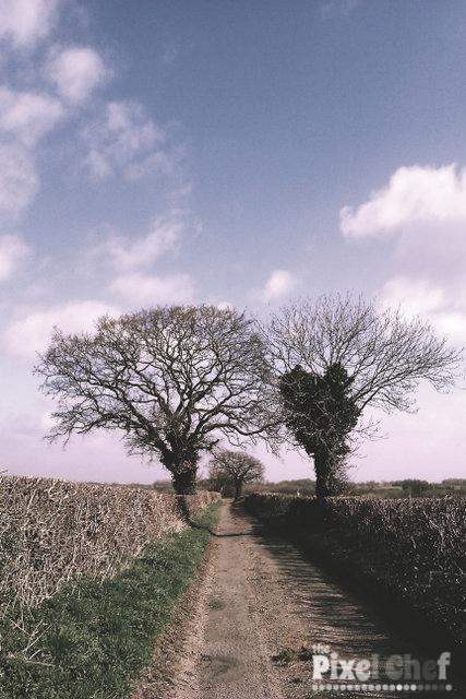 Walking Carbrooke 18th April (2)