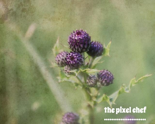 The pixel chef prints (14)