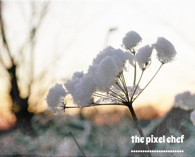 The pixel chef prints (21)