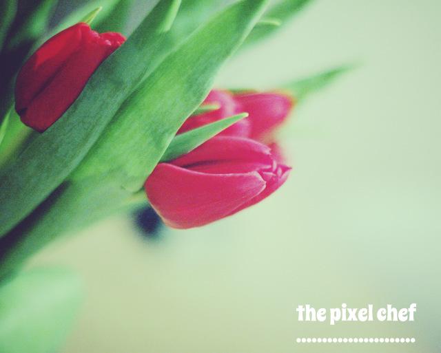 The pixel chef prints (25)