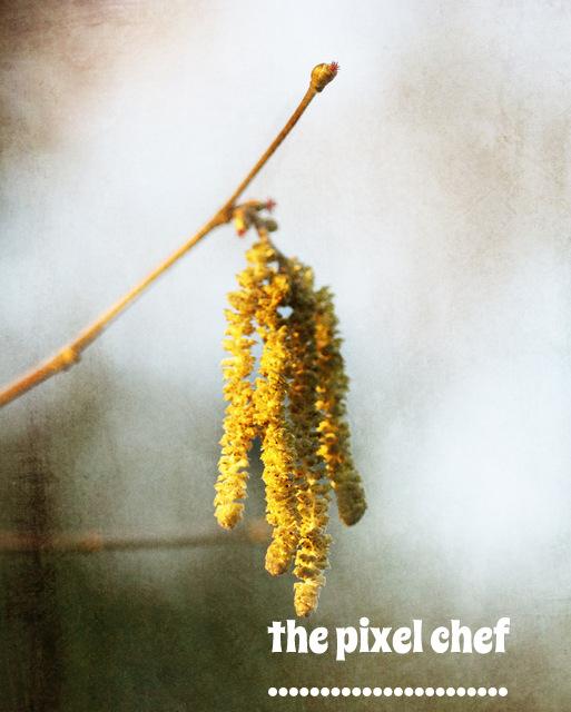 The pixel chef prints (30)