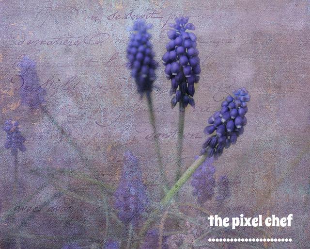 The pixel chef prints (7)
