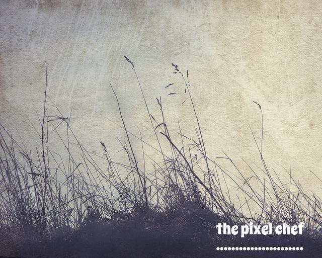 The pixel chef prints (8)